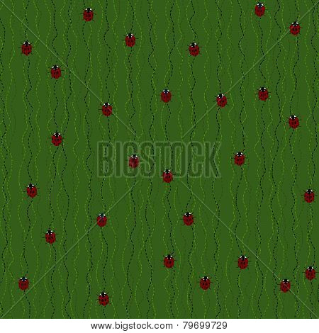 Red Ladybugs and Ladybirds on a Dark Green Background.