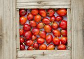 foto of wild-brier  - fresh red wild rose hips fruits in old wooden frame - JPG