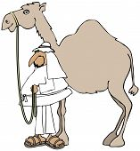pic of reining  - This illustration depicts an Arab man holding the reins to his camel - JPG