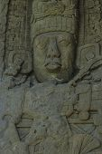 picture of mayan  - Tall - JPG