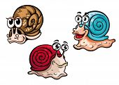 picture of snail-shell  - Three different smiling cartoon snails with colorful shells and funny eyeballs - JPG