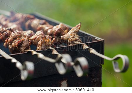 Lamb Meat Shashlik