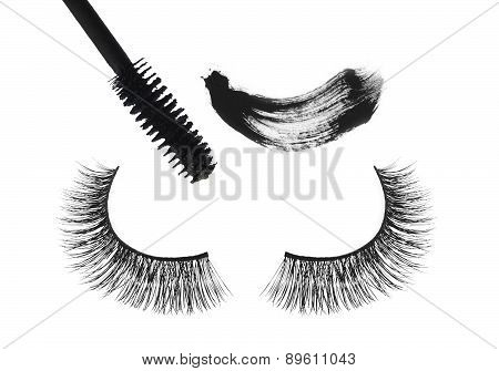 Black False Eyelash And Mascara Isolated On White Background