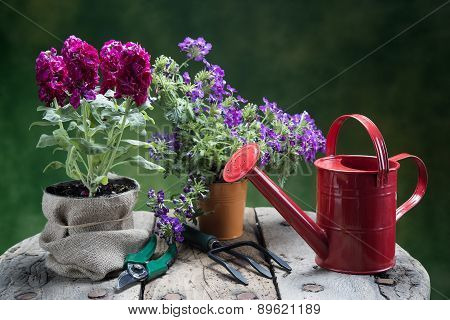 Flowers And Tools On Wood Table
