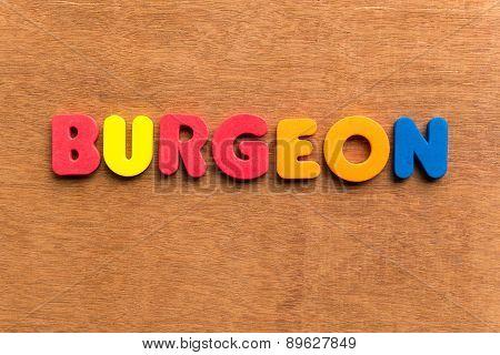 Burgeon