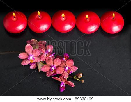 Beautiful Top Down Spa Concept Of Twig Red Orchid Flower, Phalaenopsis With Water Drops And Row Cand