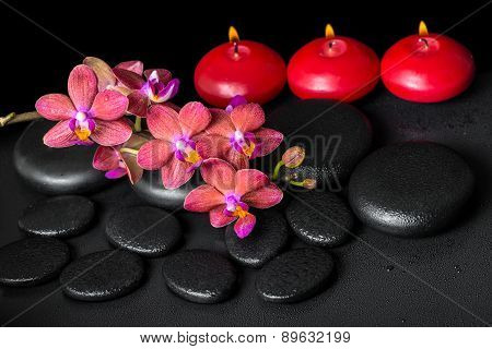 Beautiful Spa Still Life Of Blooming Twig Red Orchid Flower, Phalaenopsis With Water Drops And Candl