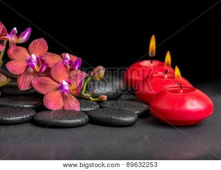 Beautiful Spa Composition Of Blooming Twig Red Orchid Flower, Phalaenopsis With Water Dew And Candle
