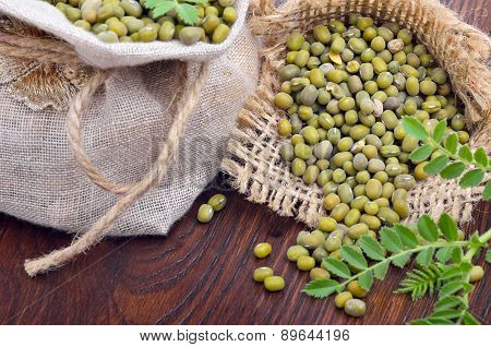 Chickpea Varieties In A Burlap Bag With Green Sprouts