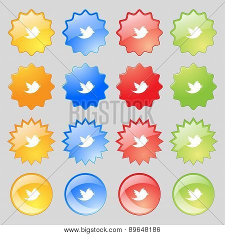 Social Media, Messages Twitter Retweet Icon Sign. Big Set Of 16 Colorful Modern Buttons For Your Des