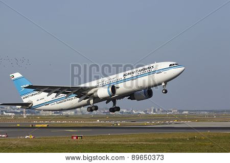 Frankfurt Airport - Airbus A300 Of Kuwait Airways Takes Off