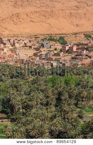 The Agriculture At Foothill In Tinghir City, Morocco