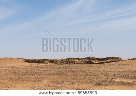 The Sand Barrier Made From Straw For Sahara Desert