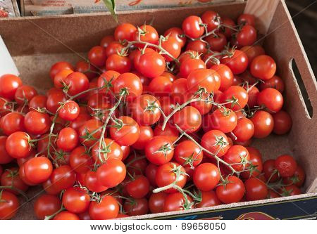 Sicilian Box Of Bunches Cherry Tomatoes