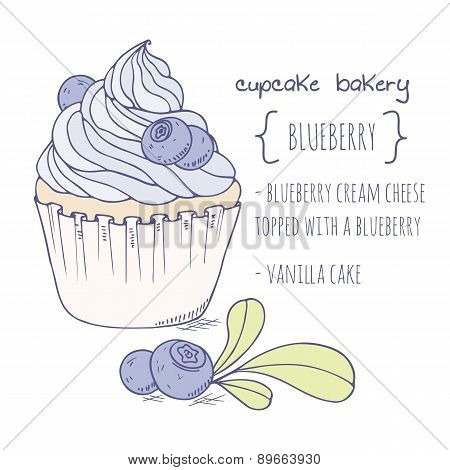 Hand drawn blueberry cupcake