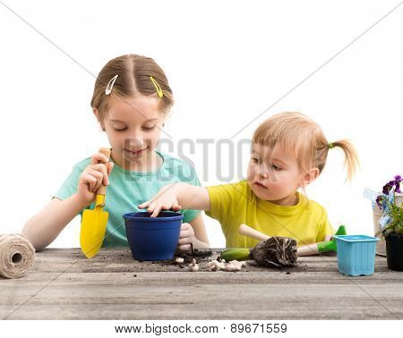 Two little sisters are engaged in gardening. Hyacinth plant flowers on a wooden table