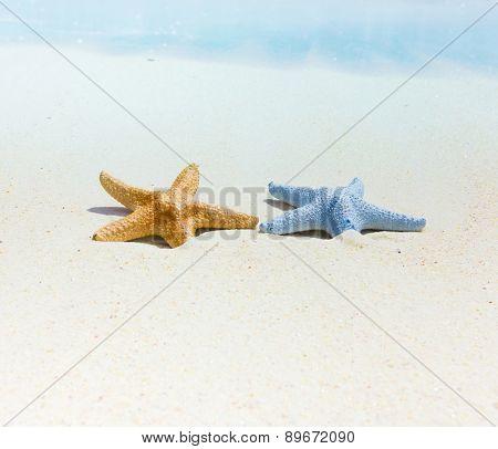 Scene Idea Sand