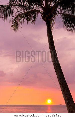 Fiery Backdrop Sunset Divine