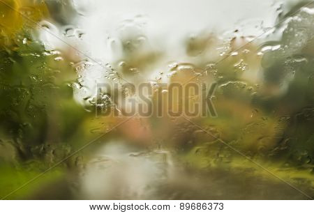 Fall rainy window