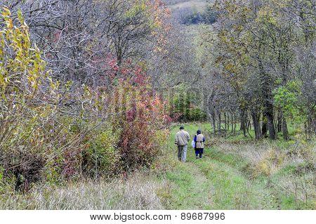 Autumnal  promenade