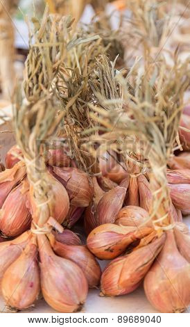 Shallots for Sale