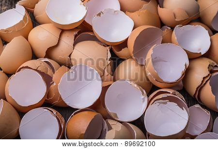 Eggshell On The Wooden Table