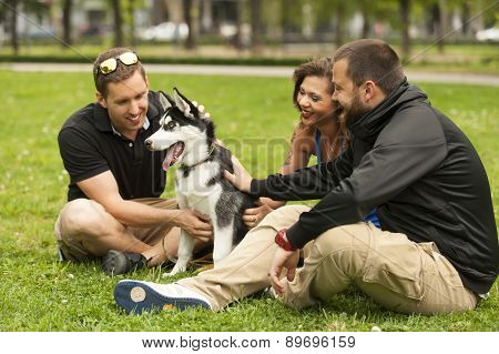 Three friends, boys and girl,petting a husky in a grass in a park, urban scene