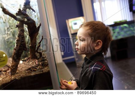 Kid In The Museum
