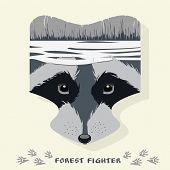 stock photo of raccoon  - Vector illustration of cartoon raccoon - JPG