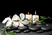 pic of tendril  - beautiful spa concept of blooming white hibiscus twig with tendril passionflower and candles on zen basalt stones with drops - JPG