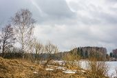 stock photo of birching  - Spring landscape with birch trees and a river covered with ice - JPG