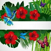 stock photo of colibri  - Tropical floral design background with bird - JPG