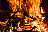picture of firewood  - The Burning firewood in the fireplace closeup - JPG