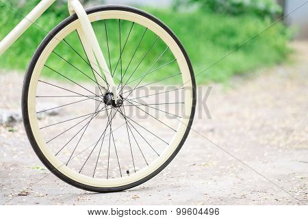 Bicycle Wheel On A Background Of Grass