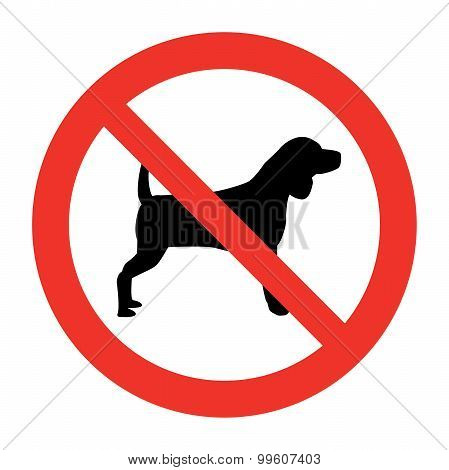 Dog Not Allowed