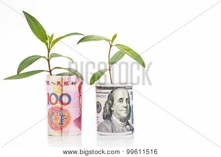 Concept Of Green Plant Grow On Usd Against China Renminbi Currency