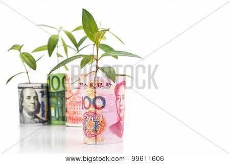 Concept Of Green Plant Grow On Currency With China Yuan Renminbi In Foreground