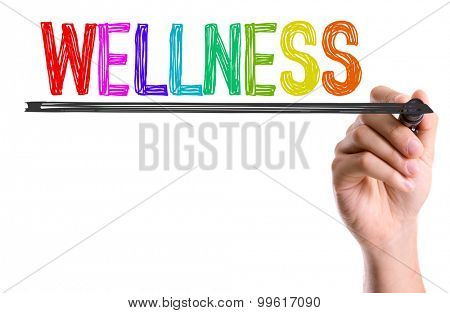 Hand with marker writing the word Wellness