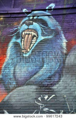 Street art racoon