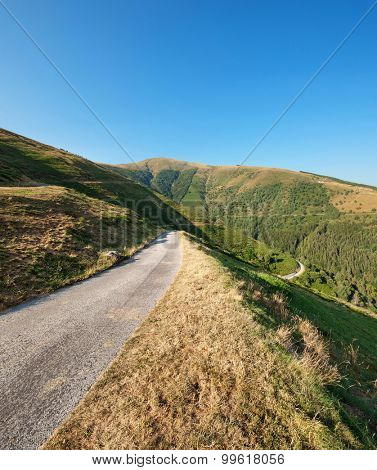 Swiss mountain landscape, road through pastures