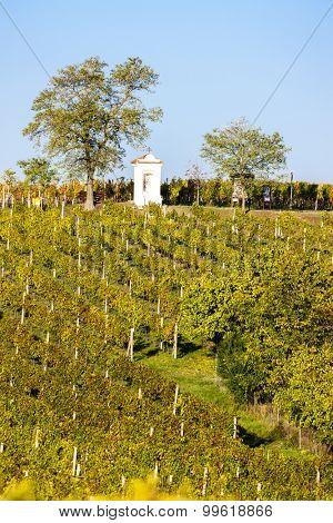 God's torture with autumnal vineyard, Modre Hory, Southern Moravia, Czech Republic