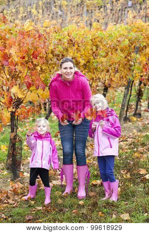 mother and her daughters in autumnal vineyard
