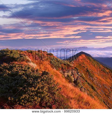 Morning landscape in the mountains in autumn. Colorful sunrise. Carpathian Mountains. Ukraine, Europe