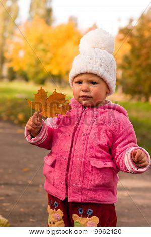 Beautiful Baby In Autumn