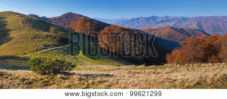 Sunny morning in the mountains. Autumn Landscape with beech forest on the slopes. Carpathians, Ukraine, Europe