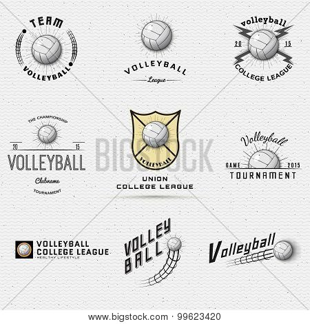Volleyball badges logos and labels for any use