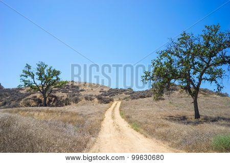 Dirt Road In California