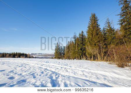 Winter Landscape Of Suburban Areas Of Zakopane