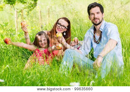 Family having picnic on meadow with healthy fruit
