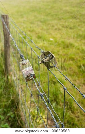 Two Wire Tensioners In An Agricultural Fence